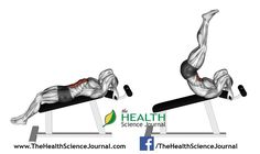 © Sasham | Dreamstime.com - Exercising for bodybuilding. Decline Reverse Crunch