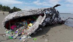 Giant 'Dead Whale' Is Haunting Reminder of Massive Plastic Pollution Problem. Greenpeace Philippines gives us an incredible look at the harms plastic has on marine life in this giant art exhibit Ocean Pollution, Plastic Pollution, Save Our Earth, Save The Planet, Salve A Terra, Plastic Problems, Save Our Oceans, Environmental Issues, Art Plastique
