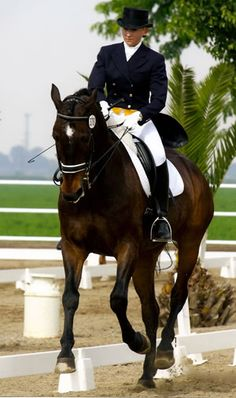 Dressage: yes please!