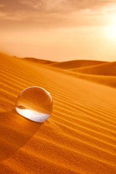 drop of water on orange sand dunes. Image Zen, Coffee And Cigarettes, Orange Aesthetic, Water Droplets, Glass Ball, Macro Photography, Desert Photography, Crystal Ball, Belle Photo