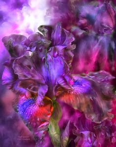 Коллекция картинок: Цифровая живопись Кэрол Каваларис. Цветы