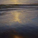 brillos de tarde, óleo sobre lienzo, 54x73 cm.
