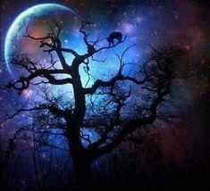 Beautiful Moon, Beautiful World, Beautiful Things, Vincent Van Gogh, Halloween Looks, Halloween Night, Nature Tree, Nature Pics, Nature Tattoos