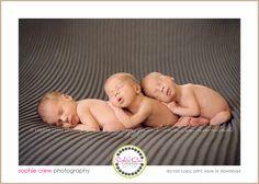 1newborn photography in san diego sophie crew multiple birth twins triplets newborns photography for baby triplet scripps ranch rancho bernardo la jolla downtown