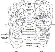 feet.jpg (800×758)