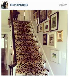 Erin gates cheetah staircase I LOVE animal prints on the stairs!
