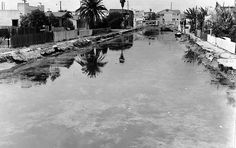 The canals in Venice, California, circa 1966, shortly before a $10 million renovation. (LAPL 00057285) Bizarre Los Angeles