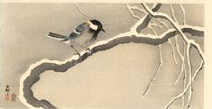 Giant tit on a snowy branch - Ohara Koson - WikiPaintings.org