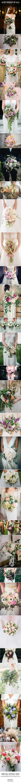 Wedding Bouquet Inspiration | Bridal Bouquet Ideas | http://www.rockmywedding.co.uk/30-best-bouquets-of-2015/