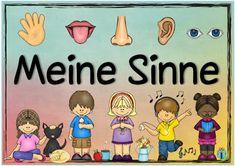 """Sachunterricht in der Grundschule: Themenplakat """"Meine Sinne"""""""