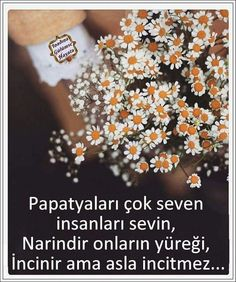 Papatyaları sevelim papatyaları sevenide sevelim :) True Words, Daisy, Quotes, Pictures, Sign, Google, Daisies, Queen, Quotations