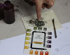Learn How to Test Your Soil for the Upcoming Gardening Season  http://www.organicauthority.com/learn-how-to-test-your-soil-for-the-upcoming-gardening-season/