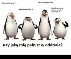 skipper pingwiny cytaty - Szukaj w Google