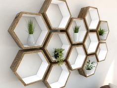 Hexagon Shelves – Dark Oak Hand Painted in Farrow & Ball Hexagon shelves white painted dark oak hexagon shelf_Left Angled Shot I Hexagon Wall Shelf, Honeycomb Shelves, Geometric Shelves, Honeycomb Shape, Wall Shelves Design, Wall Shelving, Shelving Ideas, Oak Shelves, In Wall Shelves