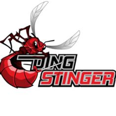 The Ding Stinger Touch Screen Technology, Application Design, Colorado Springs, App Store, App Design