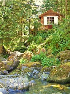 Thanksgiving cabin in the Cascades - Stevens Pass, Washington State