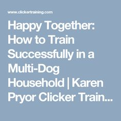 Happy Together: How to Train Successfully in a Multi-Dog Household   Karen Pryor Clicker Training