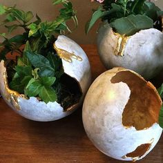 Make your DIY monster eggs out of concrete with balloons and RapidSet Cement as planters or containers. Everyone is so unique., DIY Concrete Monster Eggs that can easily be poured with Balloons and Rapidset Cement. Every egg is unique Concrete Bowl, Concrete Molds, Concrete Garden, Concrete Planters, Diy Planters, Poured Concrete, Succulent Planters, Succulents Garden, Cement Art