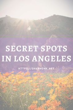 I bet you didn't know that these secret spots existed in Los Angeles! Find out what they are here http://shannonk.net/blog/5-secret-spots-in-los-angeles