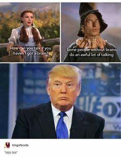 Haha Trump funny true