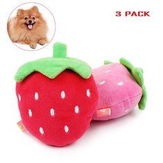 Geekercity Strawberry Style Pet Dog Cat Toy  Cute Squeaky Chew Cotton Dog Toy Puppy Plush Pet Toy  Lovely Molar Toys  Training Chew Toys 3 PACK Strawberry >>> Visit the image link more details.