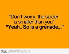 My thoughts EXACTLY when I'm afraid of spiders