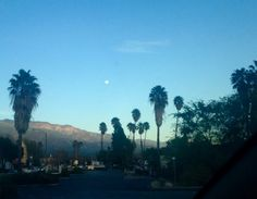 Ojai, CA - Must Love Sunshine Blog