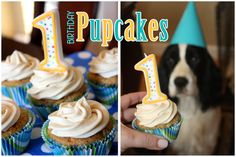 pupcakes cupcakes for dogs! I am making these for Rocky's 1st birthday next week!