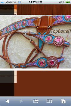 Love this set #paintedtack #tack #gorgeous