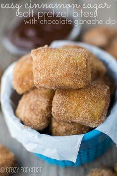 Easy Cinnamon Sugar Soft Pretzel Bites @Ian Tuck Tuck Tuck Tuck Hahn for Crust