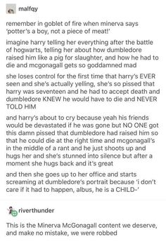 She wasn't the first one to acuse albus of treating harry like a piece of meat. I disagree with that, if anything Snape encouraged Dumbledore's behaviour. but I need more McGonagall standing up for Harry's well being Harry Potter Marauders, Harry Potter Jokes, Harry Potter Fandom, Harry Potter World, Albus Severus Potter, Hermione, Hogwarts, Slytherin, Drarry