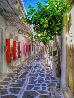 Island of Paros, Cyclades, Greece. Learning about the Cyclades in Art History! So lovely! Places Around The World, The Places Youll Go, Places To See, Around The Worlds, Santorini, Beautiful World, Beautiful Places, Beautiful Streets, Beautiful Pictures
