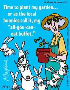 108 Best Plant talk & garden humor images | Garden quotes ...