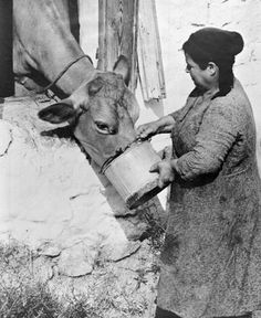 Costas Balafas - mana Manado, Costa, Greece Photography, Greek History, Vintage Italy, The Old Days, Great Photographers, Athens Greece, Vintage Photographs