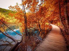 "11.8 tisuća oznaka ""sviđa mi se"", 70 komentara – Croatia Full Of life (@croatiafulloflife) na Instagramu: ""Good morning! Plitvice Lakes by @travel_gramer ♥️  Autumn is a second spring when every leaf is a…"""