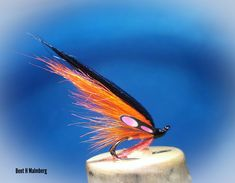 Mustad Z 6 Fish, Pets, Animals, Animales, Animaux, Pisces, Animal, Animais, Animals And Pets