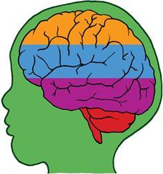 Formas de estimular la inteligencia emocional en los niños « Notas Curiosas
