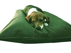 Do It Yourself DIY Pet Bed Pillow Duvet Cover  Water resist Internal case for Dog  Cat at Medium 36X29 green color with Canvas fabric  Covers only * Check out the image by visiting the link.