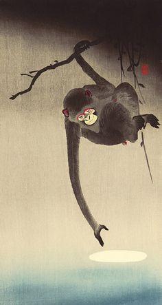by Ohara Koson Monkey Illustration, Japanese Illustration, Watercolor Illustration, Japanese Monkey, Ohara Koson, Bokashi, Monkey Art, Art Japonais, Japanese Painting
