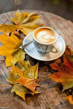 Coffee Drinks, Coffee Cups, Tea Cups, Coffee And Books, Coffee Break, Chocolate, Antiques, Tableware, Autumn