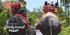 Things To Do In Bali With Kids -21 Bali Attractions For Your Family Trip