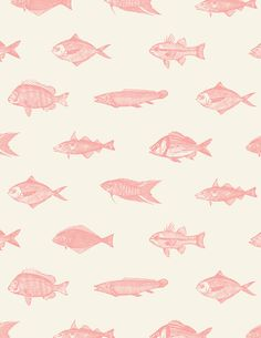 Happy Sumo Sushi - Rebrand by Andrew Adams, via Behance Fish Patterns, Pretty Patterns, Color Patterns, Fish Background, Background Patterns, Motifs Textiles, Textile Patterns, Surface Pattern Design, Pattern Art