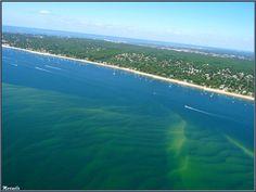 Le Bassin avec un banc de sable immergé et le rivage d'Arcachon et ses quartiers Péreire et Le Moulleau, Bassin d'Arcachon (33) vu du ciel