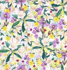 Vk173-Meadow-Flowers-by-Victoria-Krupp on Patternbank.com