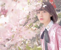 いいね!19.4千件、コメント249件 ― Sakura Miyawakiさん(@39saku_chan)のInstagramアカウント: 「こちらは、国立劇場前の桜  #spring #sakura #桜 #」