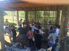Gera Brasil Consultoria e Arquitetura  Fazendo parede de pau a pique