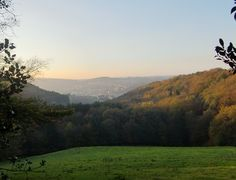 Herbstliche Stimmung im Bergischen Land, © Das Bergische