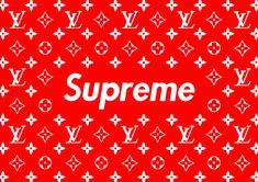 9a69ddd4fd0e 15 Best Supreme LV images