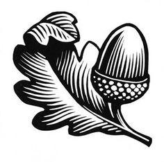 Chris Wormell, illustrator, at The Artworks Illustration Agency Linocut Prints, Art Prints, Block Prints, Acorn Drawing, Acorn Tattoo, Foto Gif, Linoprint, Stamp Printing, Scratchboard