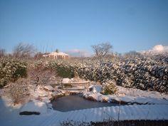 Meditation Garden at Birkheads in the snow